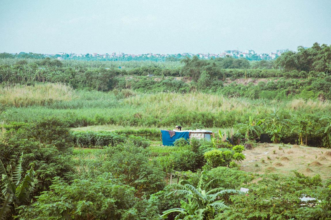 Photo Hanoï ViePhoto Hanoï Vietnam - voyage blog trip avec l'agence de voyage Comptoir des voyages. Photographie. Visite du Vietnam, hanoï. Champs et prairies où les paysans travaillent tnam - voyage blog trip avec l'agence de voyage Comptoir des voyages. Photographie. Visite du Vietnam, hanoï.
