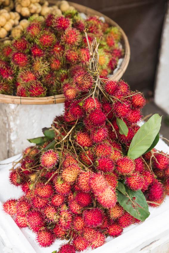 Hoi An Market blog Litchi poilus - voyage Travel french blog - voyage au Vietnam avec Comptoir des voyages