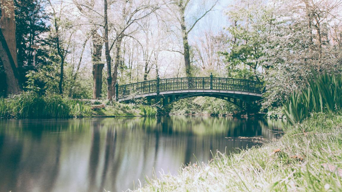 Amsterdam séjour de 4 jours - blogueur voyage paris français belles photographies de voyage - photographe blogueur europe  - Vogel Park