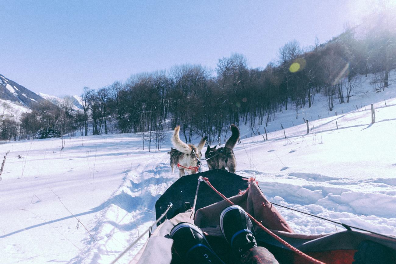 Stations de ski Les Sybelles séjour à la montagne en famille, entre amis meilleures ballade en chiens de traineaux en Savoie